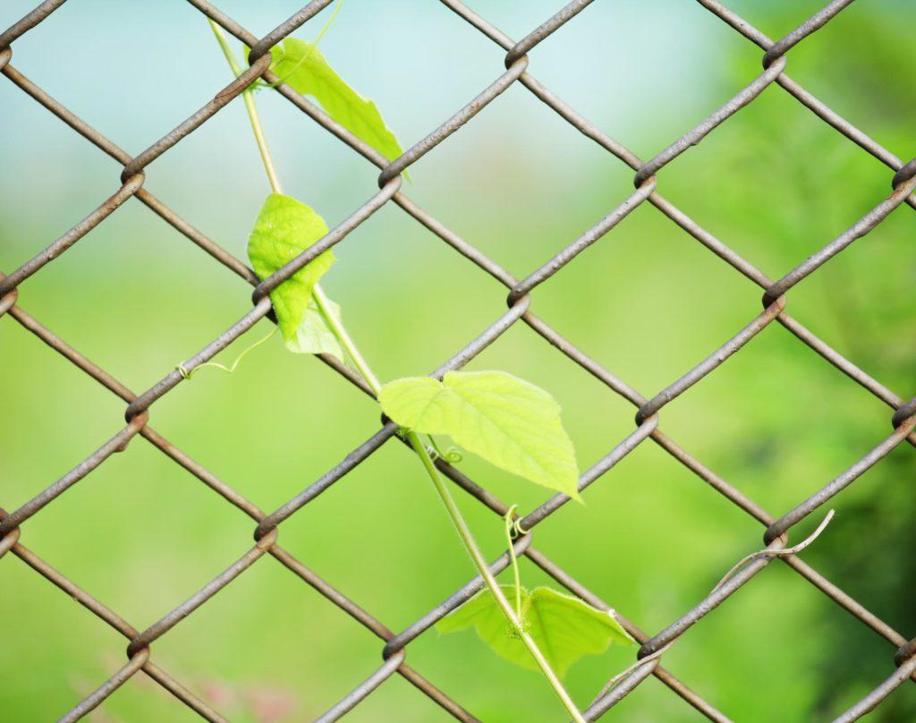 Creative Fence Contractors - Chain Link Fencing 2
